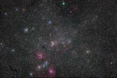 2019.2.26d_勾玉星雲付近と岩本彗星.JPG