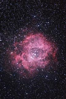 2019.2.26o_バラ星雲.JPG